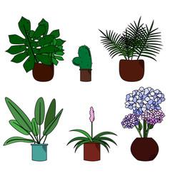 Set of cute flowers in pot cartoon style vector