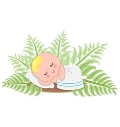 Sleep baby in fern vector