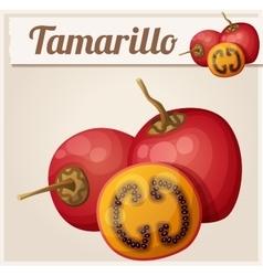 Tamarillo fruit Cartoon icon Series of vector image
