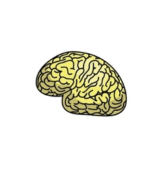 An abstract of a brain concept design vector