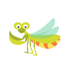 big green mantis with huge eyes and long vector image