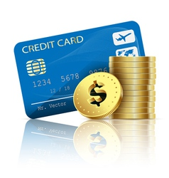credit card and coins vector image