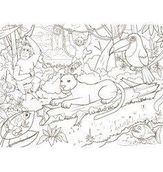 Jungle forest animals cartoon coloring book vector