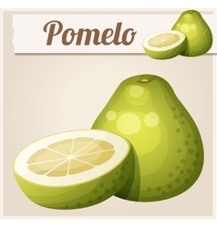 Pomelo fruit cartoon icon vector