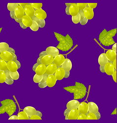 realistic detailed green bunch of grapes vector image vector image