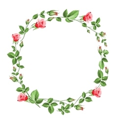 Rose wreath isolated on white vector image vector image