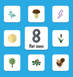 flat icon bio set of champignon lunar tree and vector image