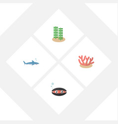 Flat icon nature set of scallop seaweed shark vector