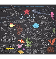 Big sea life animals hand drawn sketch set doodles vector