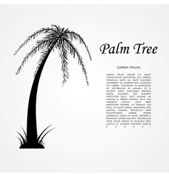 Silhouette of the palm tree vector