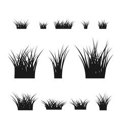 Grass bushes set black plant vector image