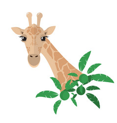 Head and neck of a giraffe in a flat style with vector
