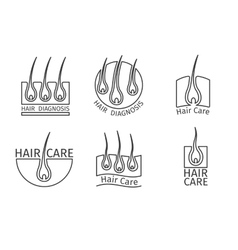 Healthy hair logos epilation and extensions vector
