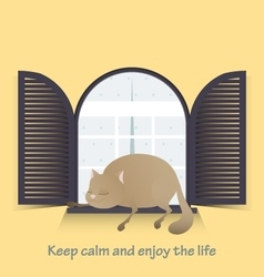 Keep calm and enjoy the life Cute fat cat vector image vector image