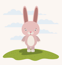 white background with color scene cute rabbit vector image