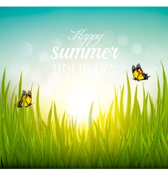 Beautiful summer background with grass and vector image vector image