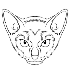 Hand draw cat girl vector image