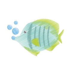 Hand drawing exotic fish sealife freshwater vector