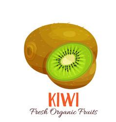 Kiwi vector