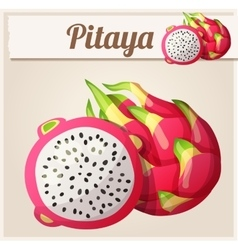 Pitaya dragon fruit fruit cartoon icon vector