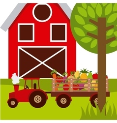 Organic farm products vector