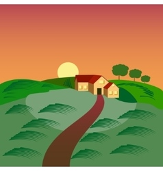 Farm with the house barn and green seeding field vector