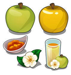 Yellow and green apple juice jam and flower vector