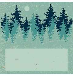 Coniferous forest vector