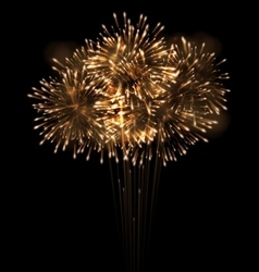 Realistic fireworks exploding in the night sky vector