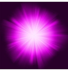 Purple star burst vector