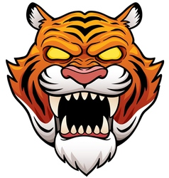 Tiger face vector