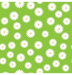 field of daisies vector image vector image