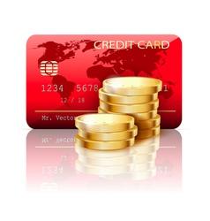 red credir card vector image