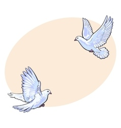 Two free flying white doves isolated sketch style vector