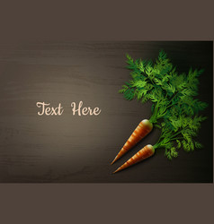 Carrot on the table vector