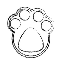 cat footprint isolated vector image vector image