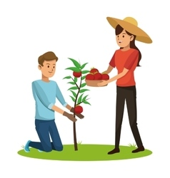 Couple picked tomato tree basket vector