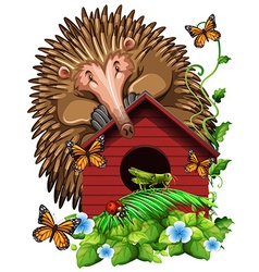 Hedghog over the birdhouse vector image vector image