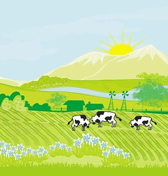Cows grazing in green meadow vector