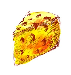 Colored hand sketch a piece of cheese vector