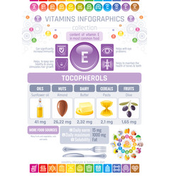 Vitamin e food icons healthy eating text letter vector