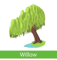 Willow cartoon tree vector