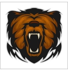 Angry bear head - isolated on white vector image