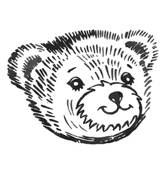 Bear smiling snout pattern vector image