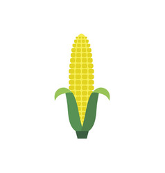 corn yellow flat icon food natural organic logo vector image vector image