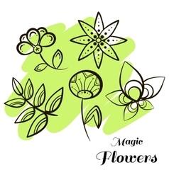 Set magic flowers vector