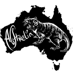 Tasmanian devil on map of australia vector