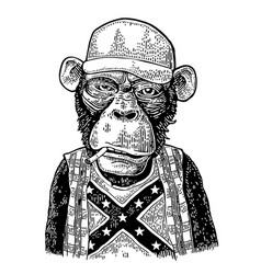 Monkey redneck in trucker cap t-shirt with flag vector