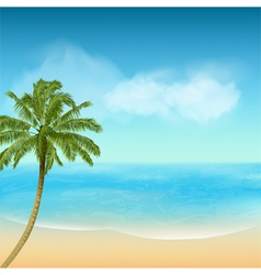 summer sea and palm tree background vector image vector image