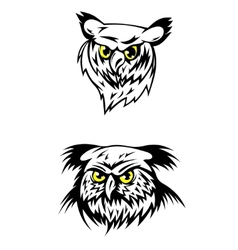 Two fierce looking owls with yellow eyes vector image vector image